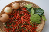 Chili ingredients preparation hot spicy oriental fresh concept — Stock Photo