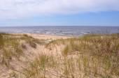 Dunes, Saulkrasti, Baltic Sea, Latvia — Stock Photo