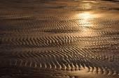 Baltic sea. Golden sunset on the sea. — Stock Photo