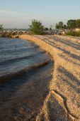 Zebra Mussel Shell Shore Waves — Stock Photo