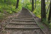 Лестничные шаг поход — Стоковое фото