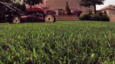 Man cutting grass in yard with lawn mower — Stock Video
