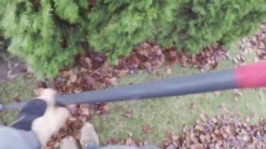 Yard work raking autumn leaves on lawn — Stockvideo