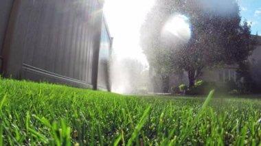 Sistema de riego automático de jardines césped riego — Vídeo de stock