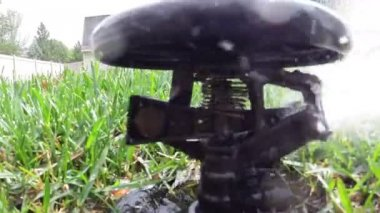 Garden automatic irrigation system watering lawn — Stock Video