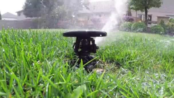 Podlewanie trawnika automatyczne