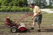 Organic Farmer Cultivating Between Garden Rows — Stock Photo