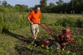 Organic Farmer Tilling Between Garden Rows  — Foto Stock