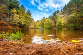 Relaxing Shore Of Small Pond In Fall — Stock Photo