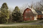 Old Red Barn In Field With Trees — Stock Photo