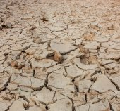 Crack soil on dry season, Global warming effect. — Foto de Stock