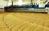 Industrial production of malt. A huge vat — Stock Photo