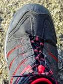 Shoe detail — Stock Photo