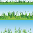 Set of grass designs vector — Stock Vector #66898363