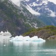 Alaska Cruise Ship with Iceberg and Mountain Landscape — Fotografia Stock  #66436747