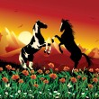 Horses on flower meadow — Stock Vector #69934567