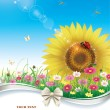 Meadow with daisies and sunflowers — Stock Vector #72755851