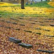 Tombstones in Fall Colors — Stock Photo #68298105
