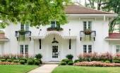 Pembe çiçekli Beyaz Saray — Stok fotoğraf