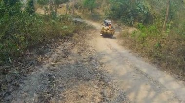 Three men riding on a tractor in the jungle — Stock Video