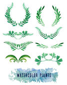 Wreaths and framework of watercolors of plants — Vector de stock