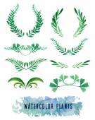 Wreaths and framework of watercolors of plants — Stock Vector
