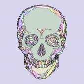 様式化された人間の頭蓋骨 — ストックベクタ