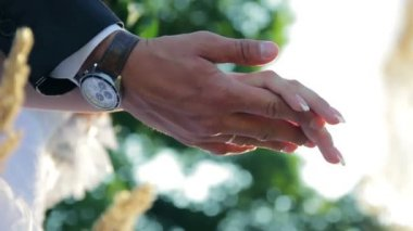 Wedding rings bride and groom hands close-up romance in nature on a sunny day wedding video — Stock Video