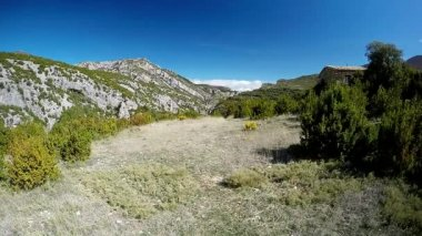 Young woman running on mountain trail in the alpine meadow — Vídeo stock