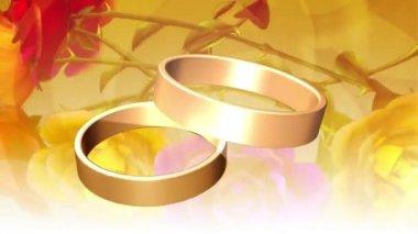 Wedding Ring 0001H — Stock Video