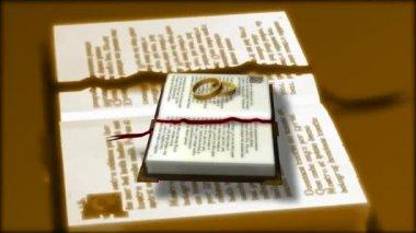 Wedding Ring 0015H — Stock Video