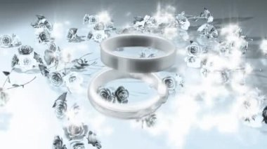 Wedding Ring 0023H — Stock Video