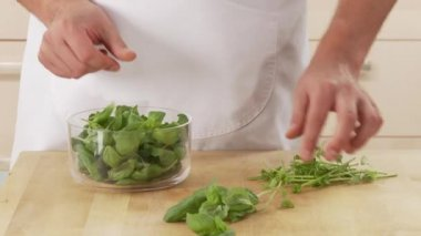 Picking basil leaves from their stalks — Stock Video