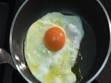 Frying egg in pan — Stock Video