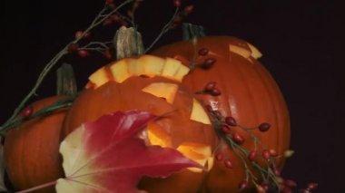 Illuminated Halloween pumpkins — Video Stock