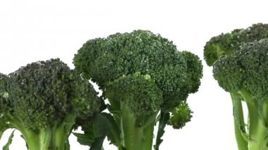 Broccoli florets standing up — Wideo stockowe