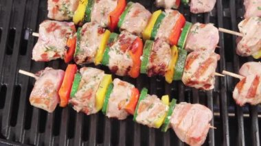 Kebabs being brushed with marinade — Stock Video