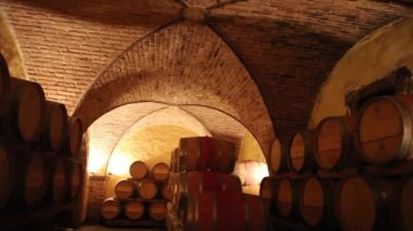 Barrels in a wine cellar — Stock Video