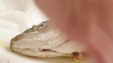 Sea bass baked in parchment — Stock Video