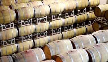 Wine cellar in the Terre da Vino — Stock Video