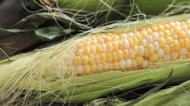 Corn on the cob close up — Stock Video