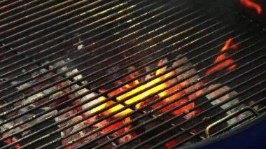 Lachs Steak Grillen — Stockvideo