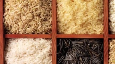 Various types of rice — Stock Video