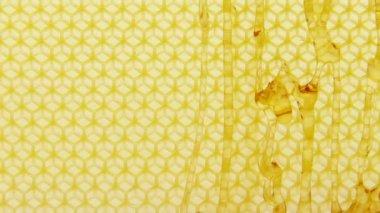 Honey running down honeycomb — Stock Video