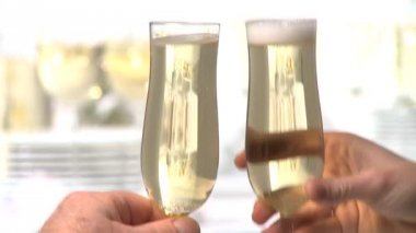 People toasting with champagne glasses — Stock Video