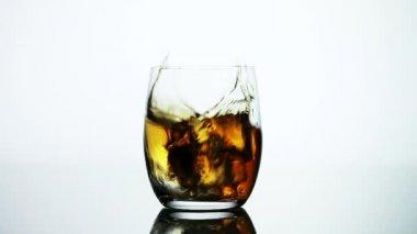 Cube de glace tomber dans un verre de whisky — Vidéo
