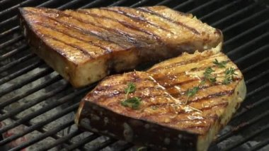 Sprinkling swordfish steaks on a barbecue — Stock Video