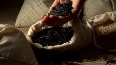Wild rice in a sack — Stock Video