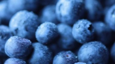 Freshly washed blueberries — Stock Video