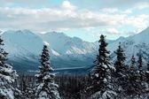 Alaska winter landscape — Stock Photo